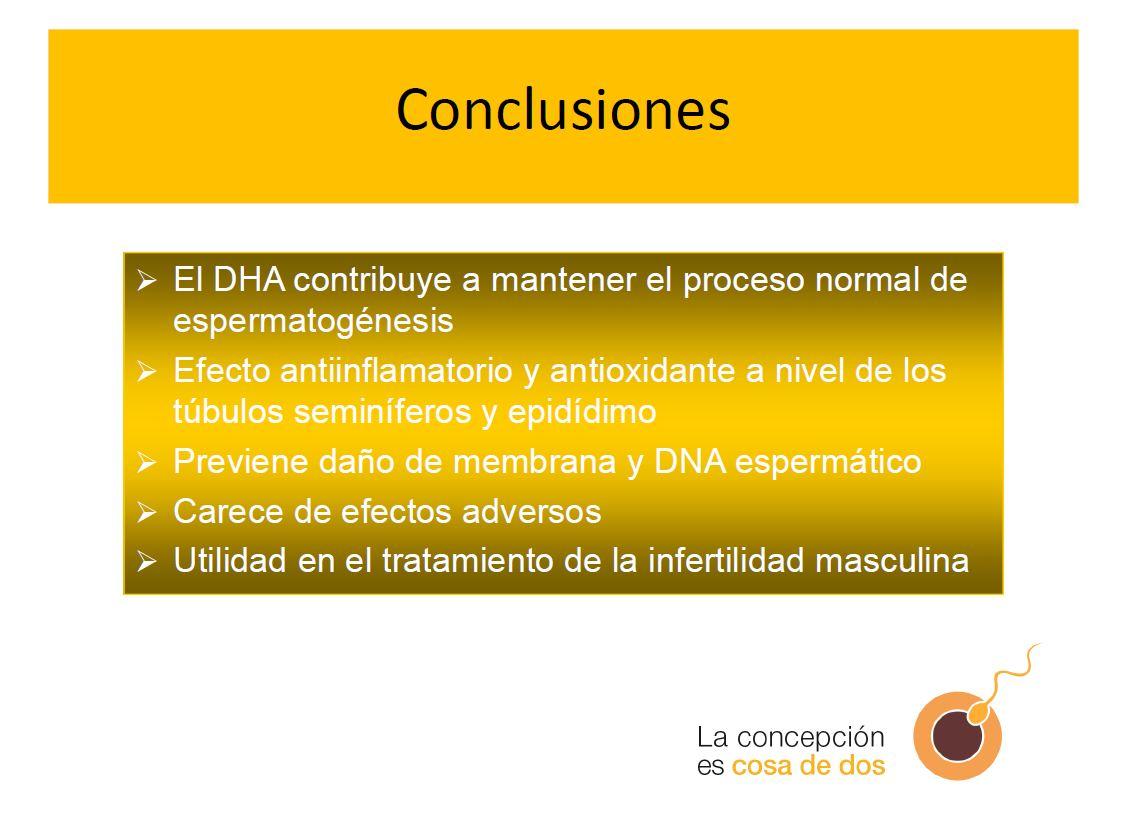 conclusiones-dha